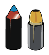 Polymer Tip Sabot and Hallow Tip